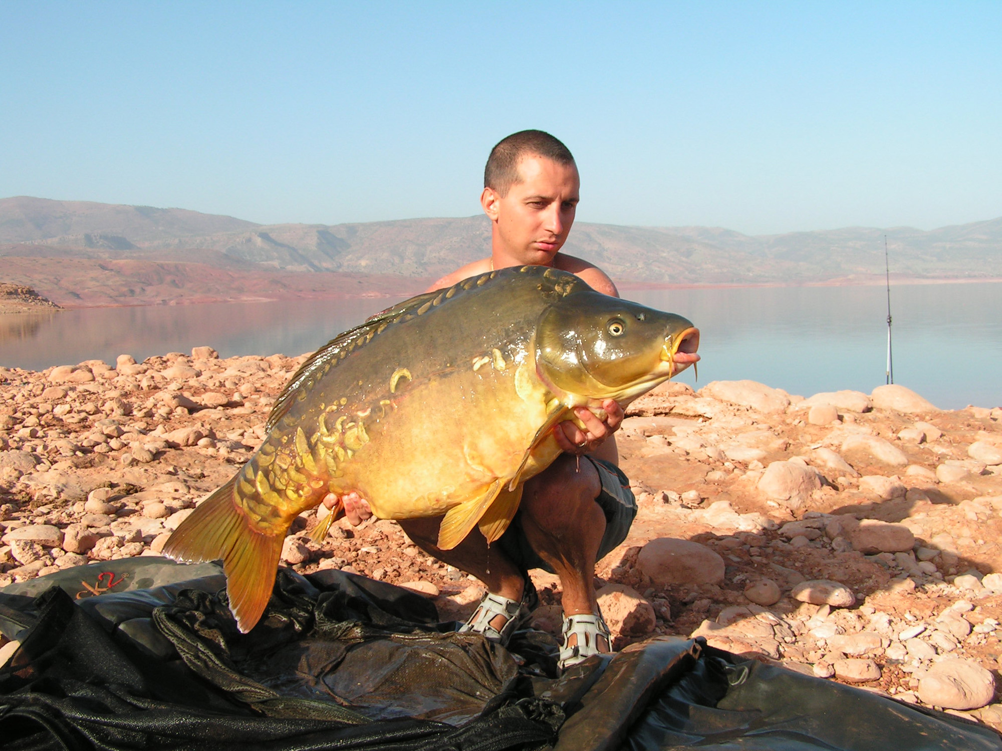 http://starbaits.com/fichiers/images/team/gallery/COLLET_Jerome/1 Jérôme Collet.JPG