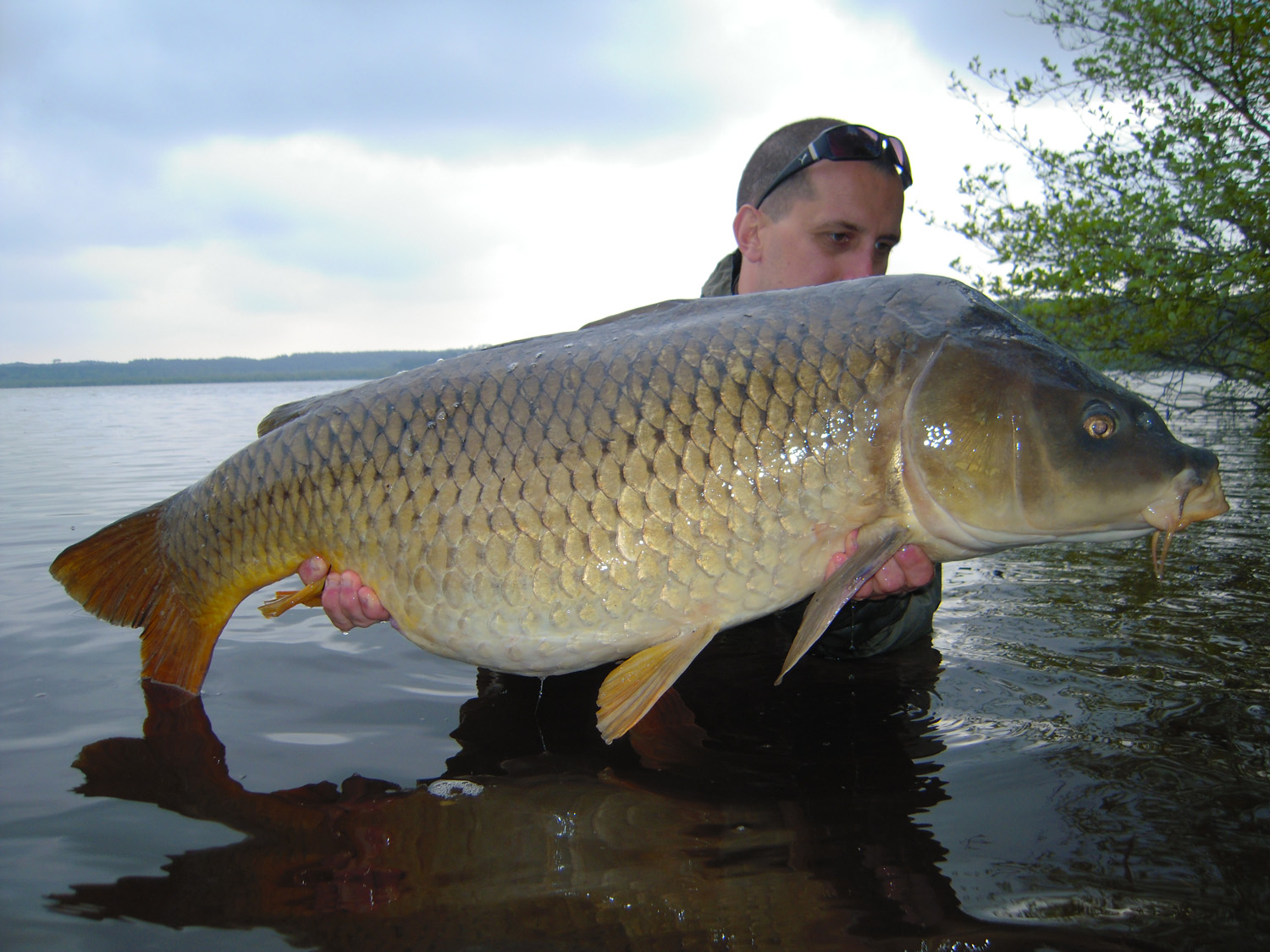 http://starbaits.com/fichiers/images/team/gallery/COLLET_Jerome/8 Jérôme Collet.jpg