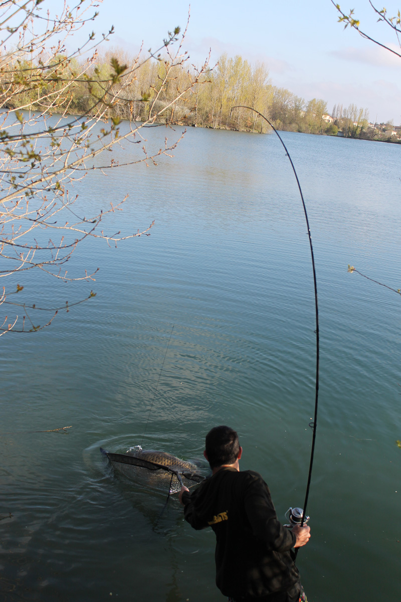 http://starbaits.com/fichiers/images/team/gallery/DUCERE_Cedric/1-DUCERE-CEDRIC.JPG