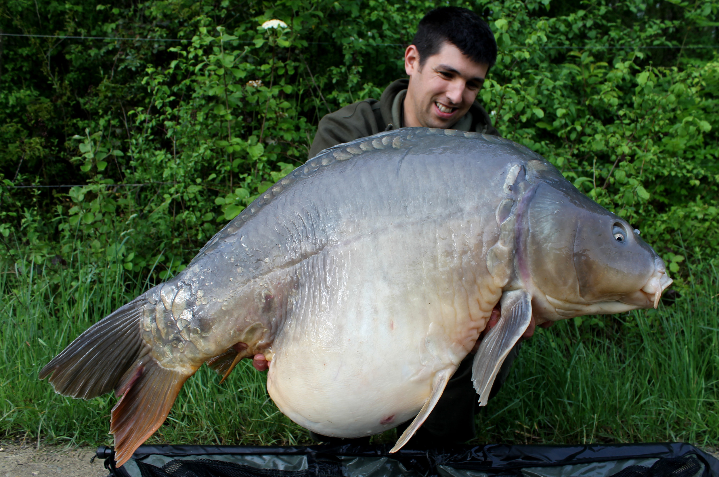 http://starbaits.com/fichiers/images/team/gallery/DUCERE_Cedric/11-DUCERE-CEDRIC.jpg