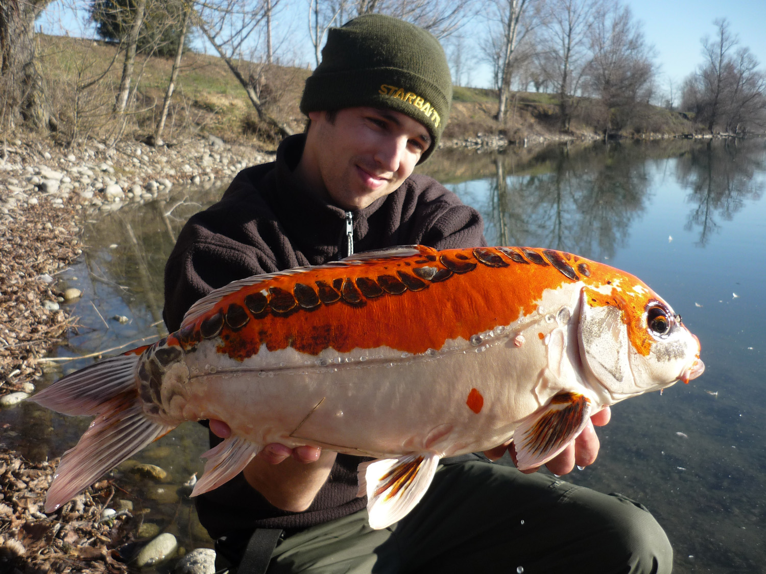 http://starbaits.com/fichiers/images/team/gallery/DUCERE_Cedric/16-DUCERE-CEDRIC.JPG