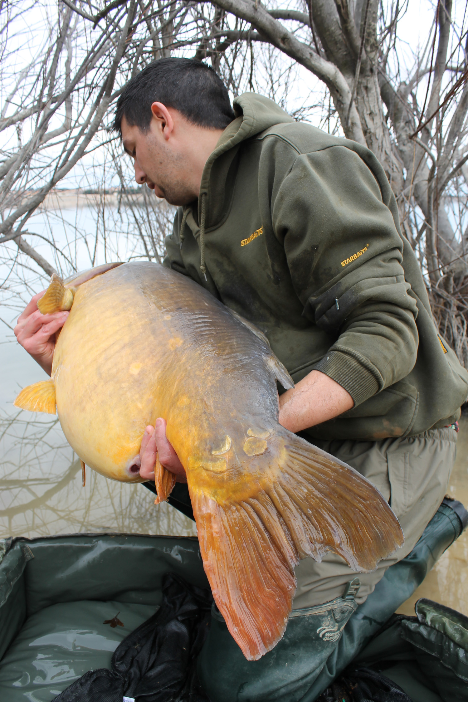 http://starbaits.com/fichiers/images/team/gallery/DUCERE_Cedric/22-DUCERE-CEDRIC.JPG