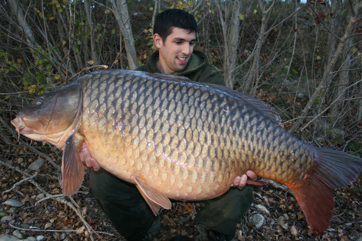 http://starbaits.com/fichiers/images/team/gallery/DUCERE_Cedric/3-DUCERE-CEDRIC.JPG