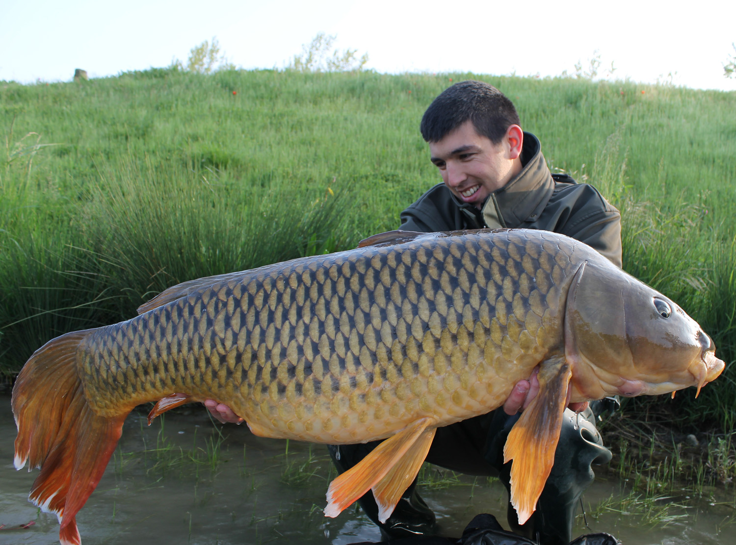 http://starbaits.com/fichiers/images/team/gallery/DUCERE_Cedric/6-DUCERE-CEDRIC.JPG