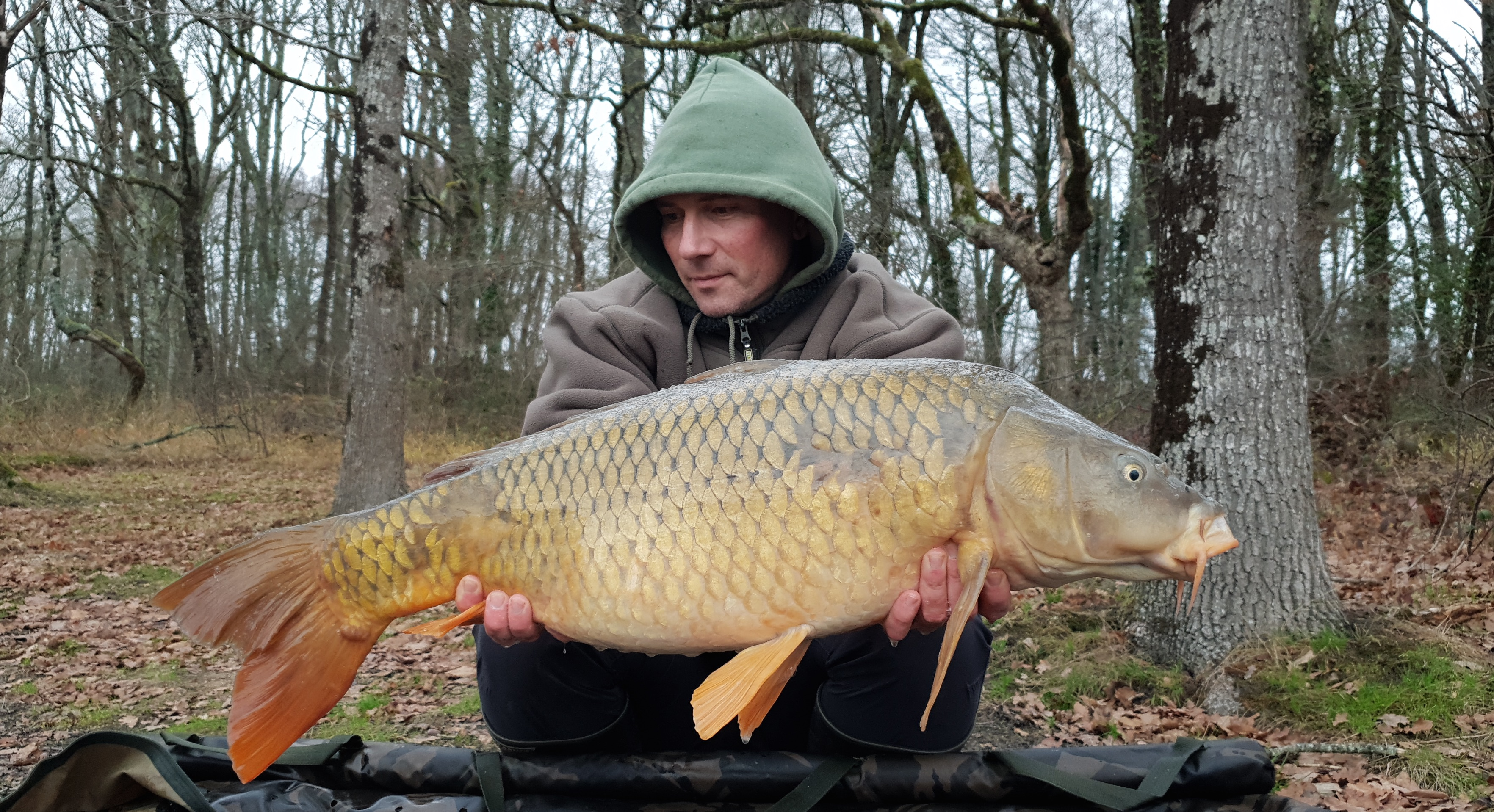 http://starbaits.com/fichiers/images/team/gallery/NICARD_Stephane/nicard_008_2019.jpg