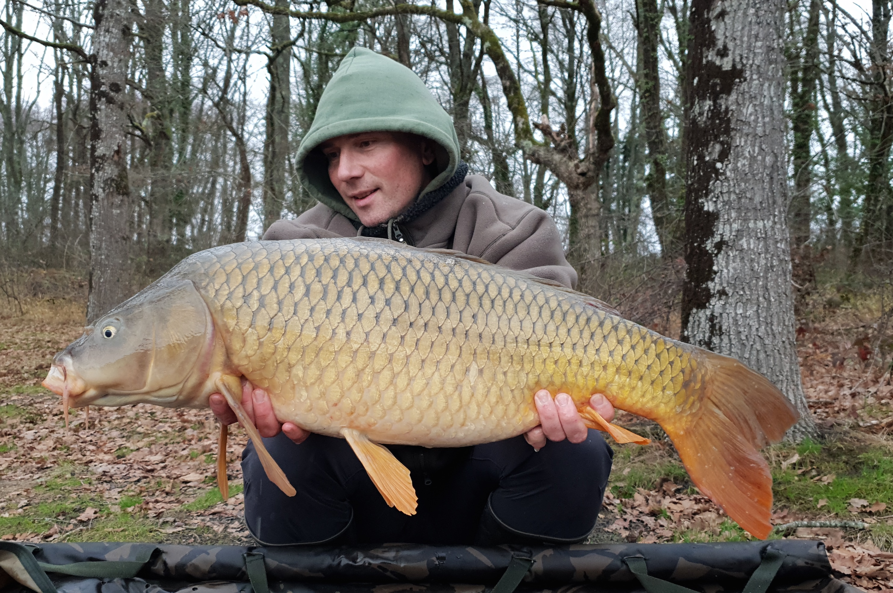 http://starbaits.com/fichiers/images/team/gallery/NICARD_Stephane/nicard_010_2019.jpg