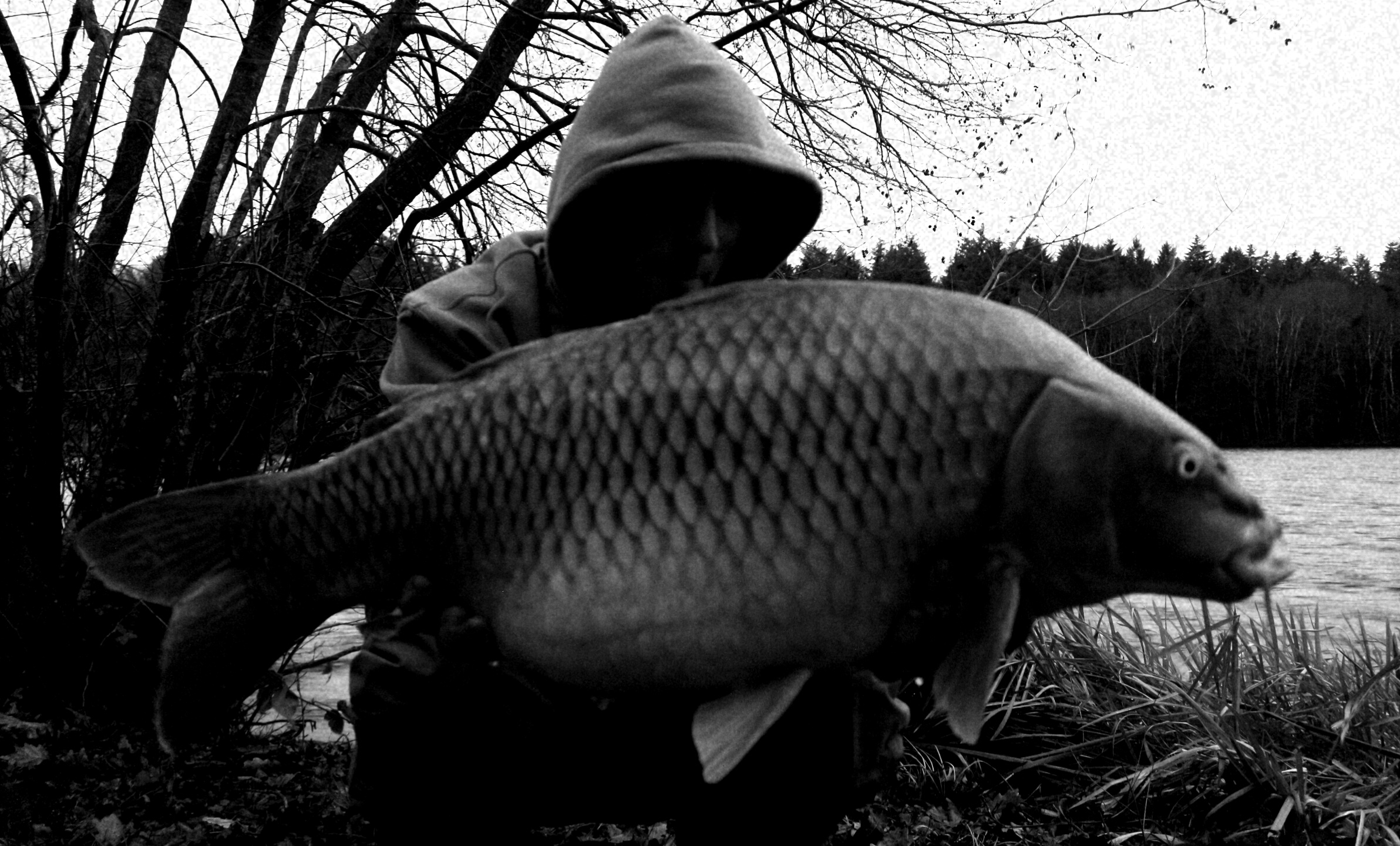 http://starbaits.com/fichiers/images/team/gallery/NICARD_Stephane/nicard_041_2019.jpg